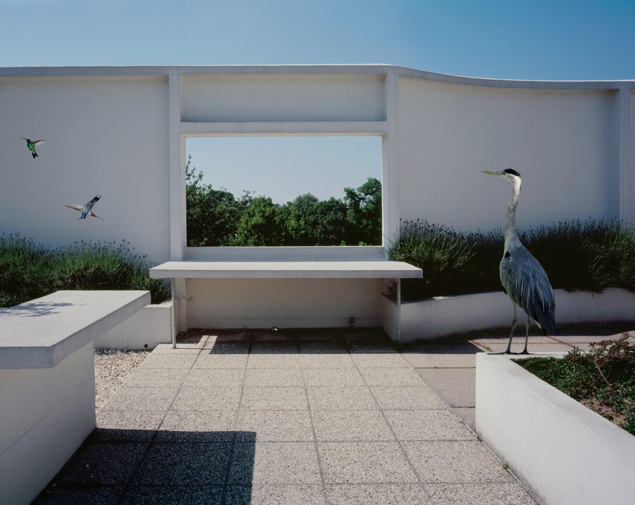 Rooftop-1258x1000