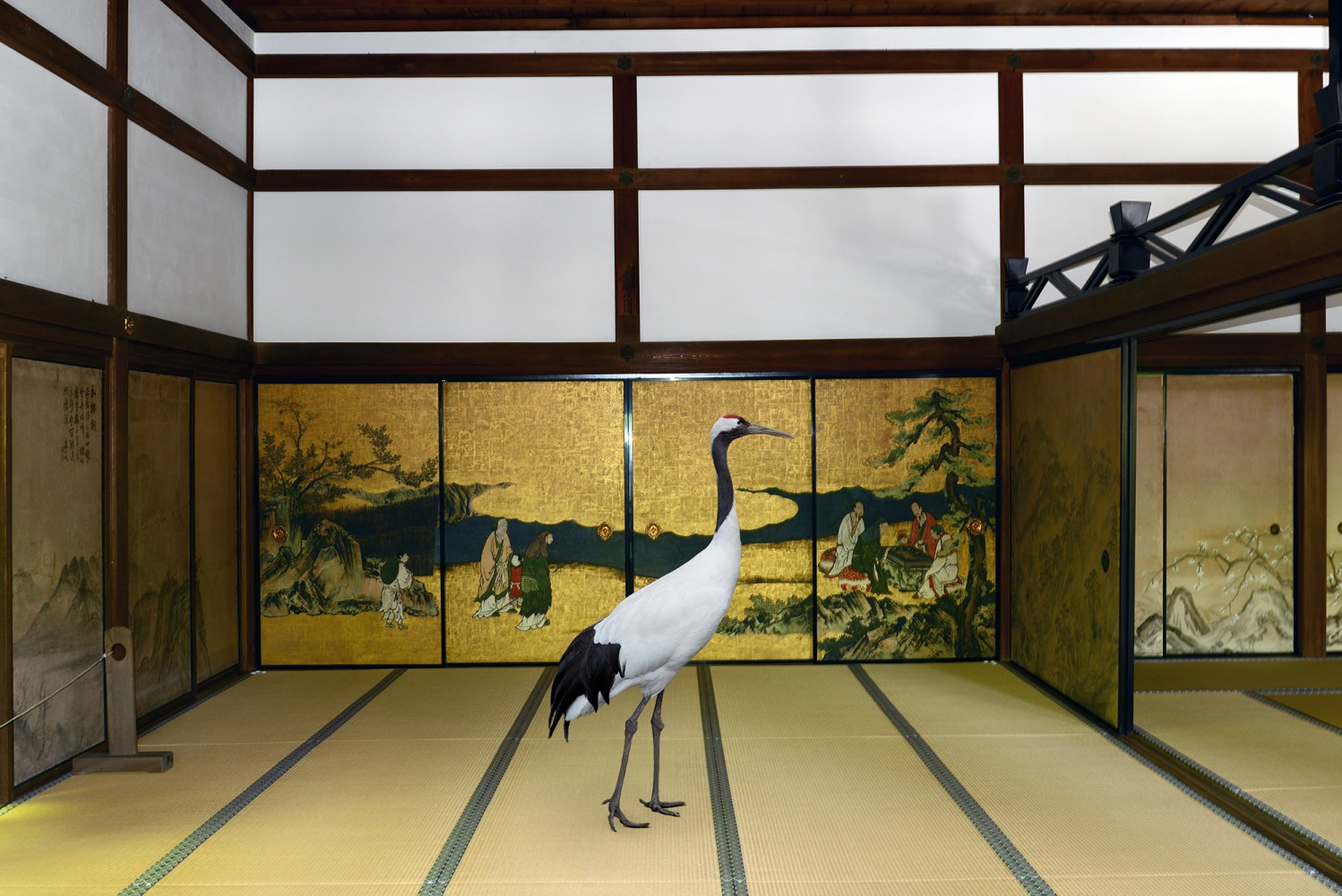 karen-knorr-.Sarus-in-Temple
