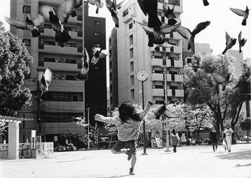 yusuke-yamatani-010