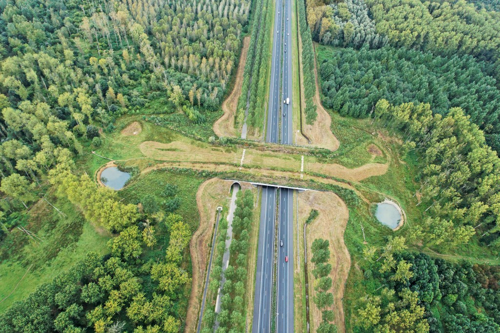 An ecoduct across the A2 at Best, just north of Eindhoven.