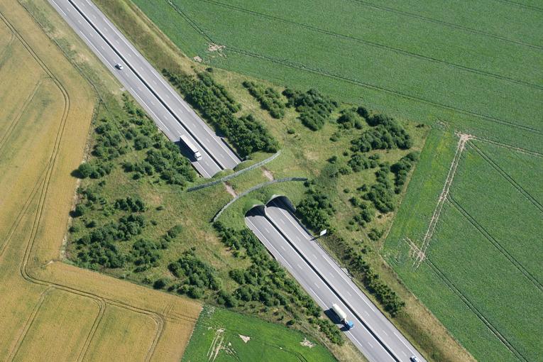 Crécy-en-Ponthieu (environs) – Ecoduc - France