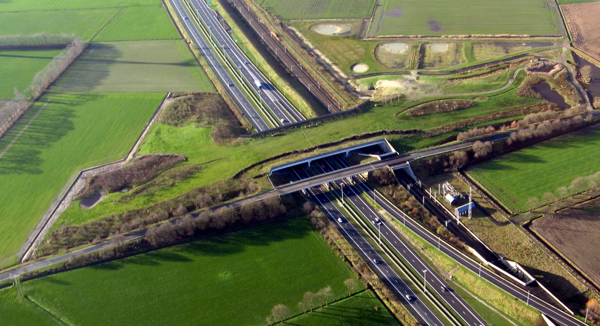 Ecoduct De munt - WUUSTWEZEL - Belgique