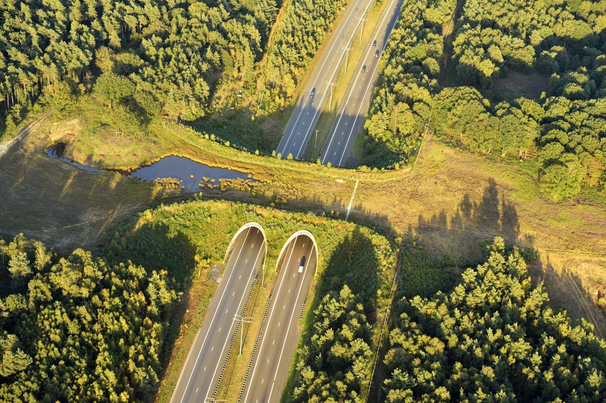 Ecoduc - Kikbeek - Belgique